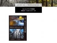 [熊本の芸術イベント]水とみどりの写真展