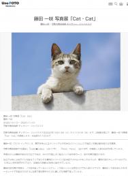 [京都の芸術イベント]藤田 一咲 写真展「Cat・Cat」