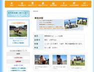 [熊本のその他イベント]乗馬体験(ポニー乗馬(引き馬))