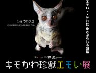 [福岡の芸術イベント]キモかわ珍獣エモい展