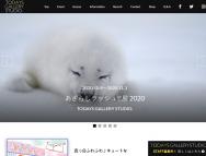 [愛知の芸術イベント]【愛知】あざらしラッシュ!!展 2020