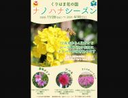 [神奈川のその他イベント]ナノハナシーズン