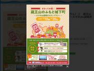 [愛知のその他イベント]蔵王山のふもと城下町
