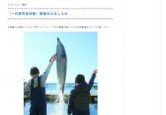 [熊本のその他イベント]イルカ一日飼育員体験
